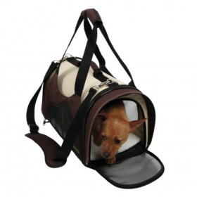 accessories metaforas DOG2