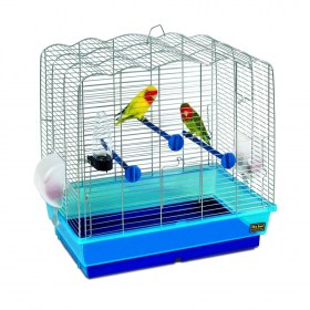 klouvia birds4